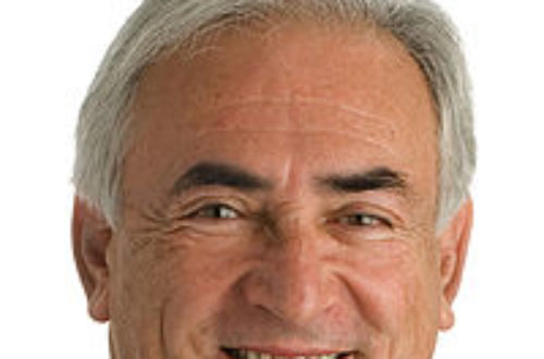 Article : DSK biaise la garde, Christine l'a garde